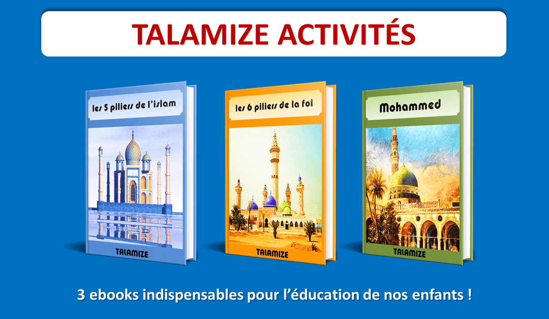 lot de 3 ebooks Talamize